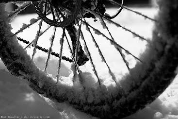 velosiped-i-zima